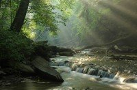 """""""Introduction To Guided Meditation"""" MP3 Download by Anne Reith, Ph.D."""