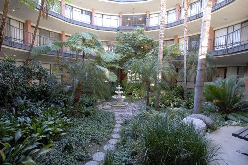 http://www.annereith.com/wp-content/uploads/2012/03/Impart-Wisdom-and-Wellness-Center-Beautiful-Atrium-e1340477246574.jpg